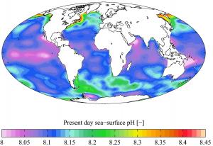 Deep Understanding from Simple Ideas: Ocean Acidification