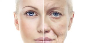 The Science Behind Aging